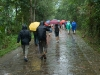 tourists-in-the-rain-my-son-vietnam