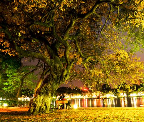 Đêm hè Hà Nội