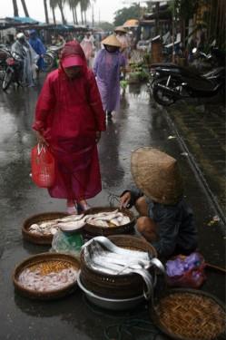 Một bà lão vừa mang mớ cá tươi ra chợ bán trong mưa lạnh.
