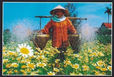 """tác phẩm """"Cho mùa xuân mới"""" của tác giả Lê Công Lê"""
