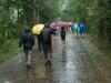 tourists-in-the-rain-my-son-vietnam